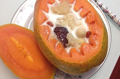 木瓜炖牛奶小白