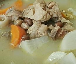 萝卜猪肺汤的做法