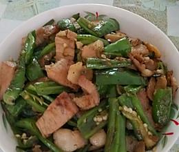 山茶油小时候版回锅肉的做法
