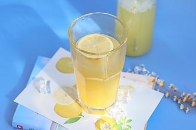 轻松自制柠檬菠萝气泡水