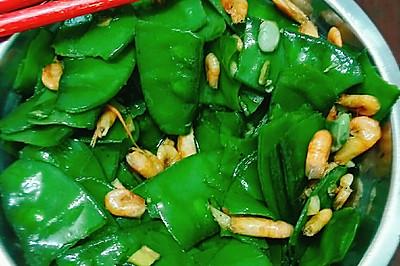 虾仁炒月亮菜