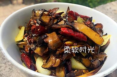 干椒野生红牛肝菌