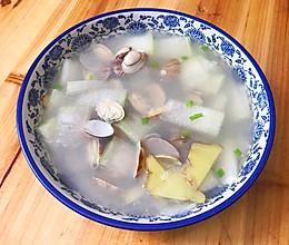 冬瓜花蛤汤的做法