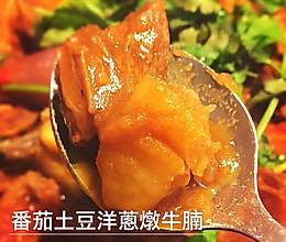 番茄土豆洋葱炖牛腩的做法