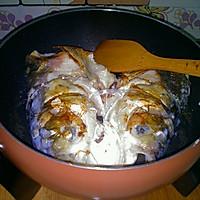 鱼头炖豆腐`﹝利仁电火锅-试用报告四﹞的做法图解4