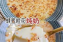 蜂蜜桂花炖奶的做法