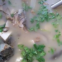 香菇豆腐鱼头汤的做法图解4