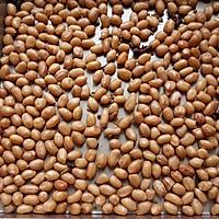五香脆花生米~好好零食的做法图解6