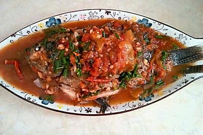 茄香罗菲鱼