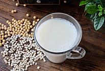薏仁米豆浆的做法