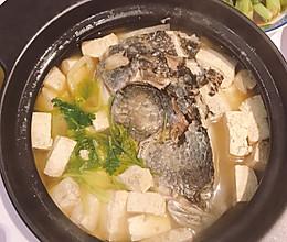 超鲜的黑鱼头炖豆腐的做法
