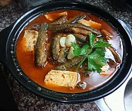 家乡味: 香辣泥鳅炖豆腐的做法