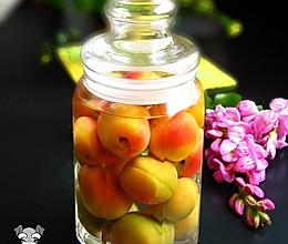 自制杏子酒的做法