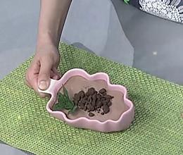 无面粉自制蛋糕的做法