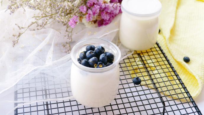 自制无添加酸奶