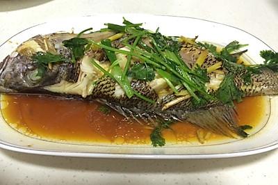 家常菜—清蒸红立鱼