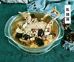 滋补乳鸽汤的做法