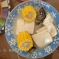 豆腐玉米鲫鱼汤的做法图解10