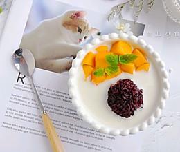 芒果椰汁紫米银耳露的做法