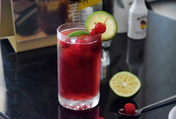 蔓越莓冰饮的做法