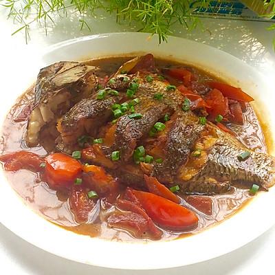 红番茄炖鱼