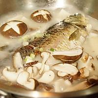 香菇豆腐鲫鱼汤的做法图解8