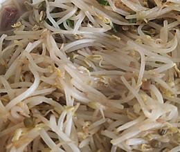 豆芽的做法