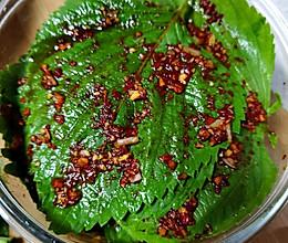 韩式腌苏子叶的做法