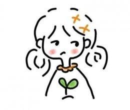 菠菜虾仁饺的做法