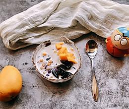 快手芒果芋圆椰奶龟苓膏的做法