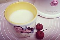 水蜜桃酸奶昔的做法