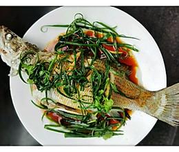 清蒸鲈鱼/清蒸盲曹鱼/清蒸鱼的做法
