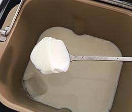 自制奶粉酸奶的做法