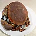 水煮面包蟹(黄金蟹)