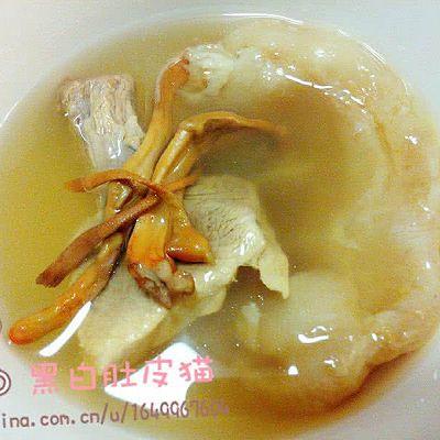 花胶虫草炖花瘦肉(电饭煲懒人版)
