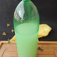10元钱为家人打造消暑冷饮——冬瓜薏米茶的做法图解10