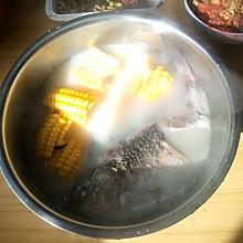 玉米鲫鱼汤