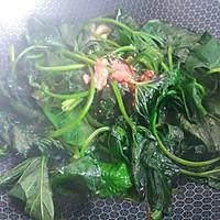 蒜油腐乳地瓜叶的做法图解5