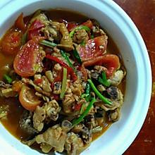 番茄炒鸡肉