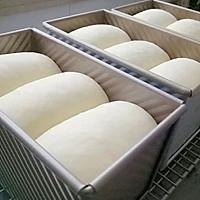 浅谈做面包的步骤和细节(5发酵)的做法图解1