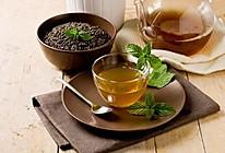 薄荷茶的做法