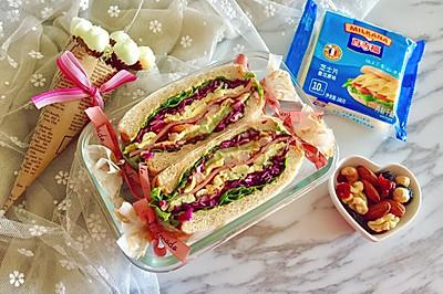 多彩野餐三明治