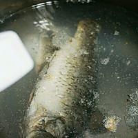 鲫鱼汤的做法图解4