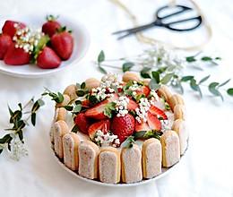 【不藏私食谱:夏洛蒂蛋糕】不会裱花也能做的精致蛋糕的做法