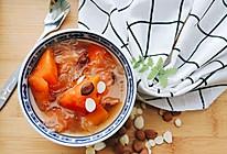 南北杏炖银耳木瓜的做法