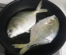红烧海昌鱼的做法