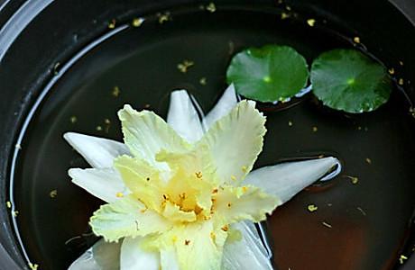 海葵静心莲 的做法