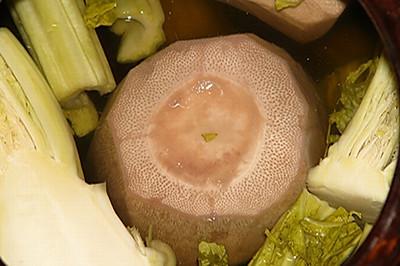 成都后花园里的(眉山泡菜)(文章来源:眉山酱腌菜、眉山泡菜)