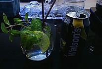 古巴鸡尾酒莫吉托的做法