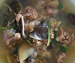甲鱼汤,鳖的做法